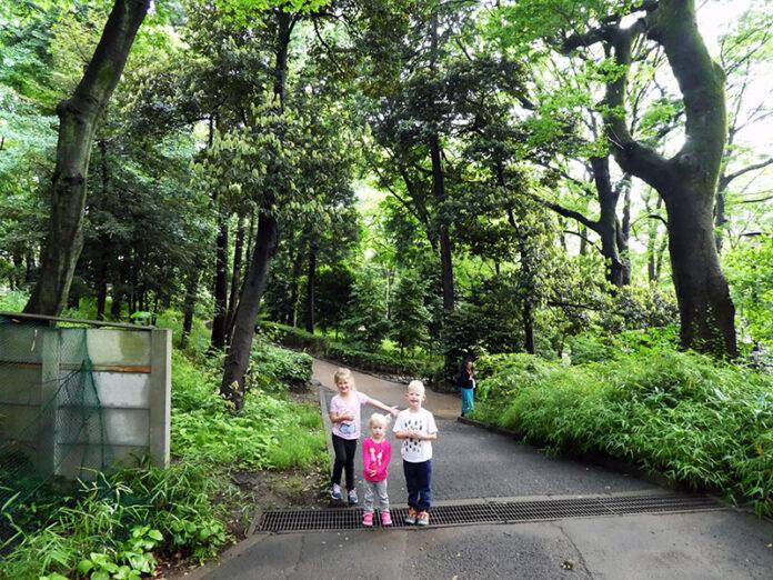 Arisugawa, Arisugawa-no-miya Memorial Park, Memorial Park, Tokyo, Japan, Playground, Library