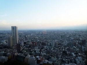 Tokyo Tower, Tokyo Metropolitan Building, Panoramic Views of Tokyo, Shinjuku, Travel with Kids, Diapersonaplane, Family Travel, Diapers On A Plane