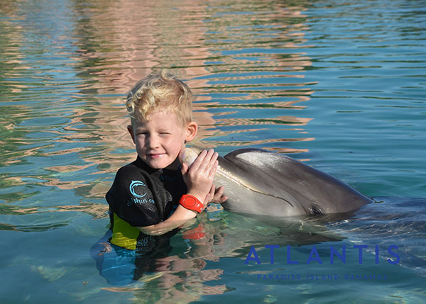 Atlantis Resort, Dolphin Cay, Swimming with Dolphins, Wading with Dolphins, Shallow Water Excursion, diapersonaplane, diapers on a plane, public beach, creating family memories, family travel, traveling with kids