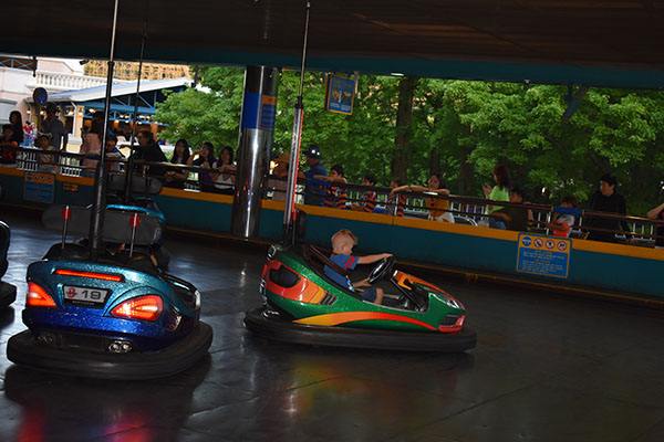 Bumper Cars Baby playing with brown bears at Everland in South Korea