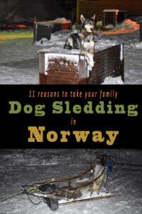 Dog Sledding Pin