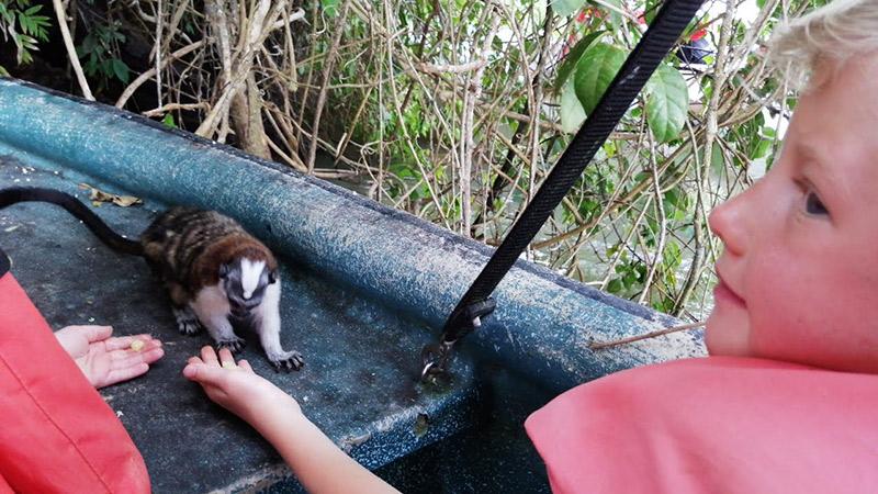 Monkey Island Panama
